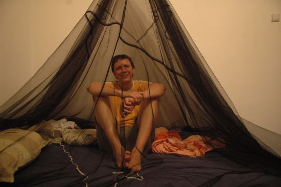 Cip with mosquito net